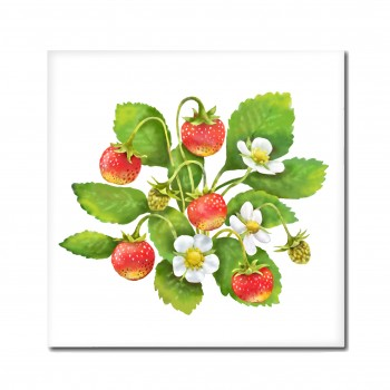 Wild strawberry pad